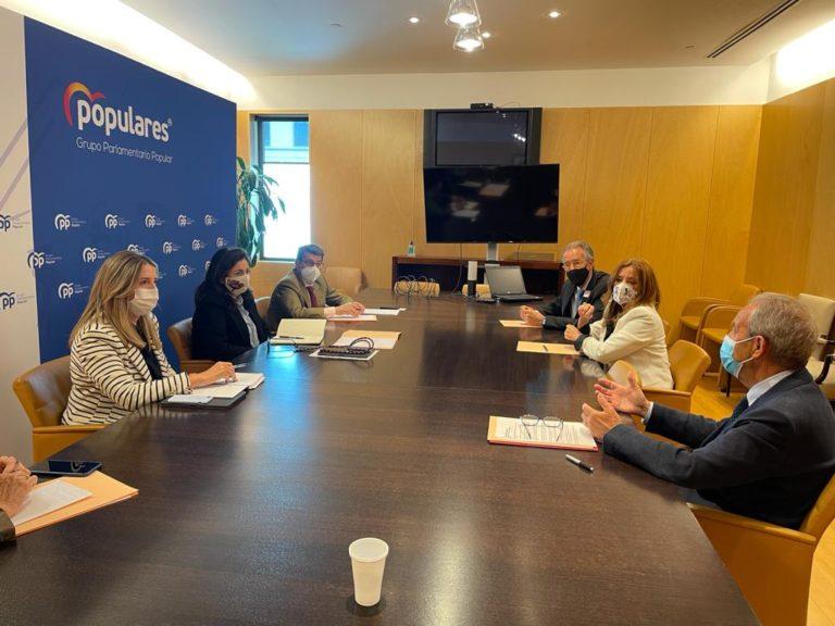 Reunión CEDDD-PP 11 de Mayo